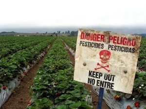 Dangerous pesticides on farm crops